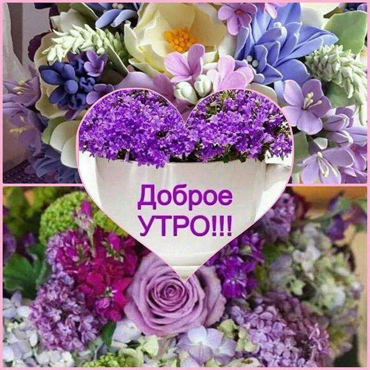 Открытки доброе утро с цветами и афоризмами