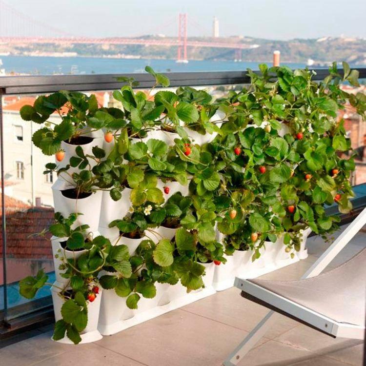 Jardin vertical au balcon am nager sa petite oasis de verdure jardinage jardins verticaux - Jardin au balcon ...