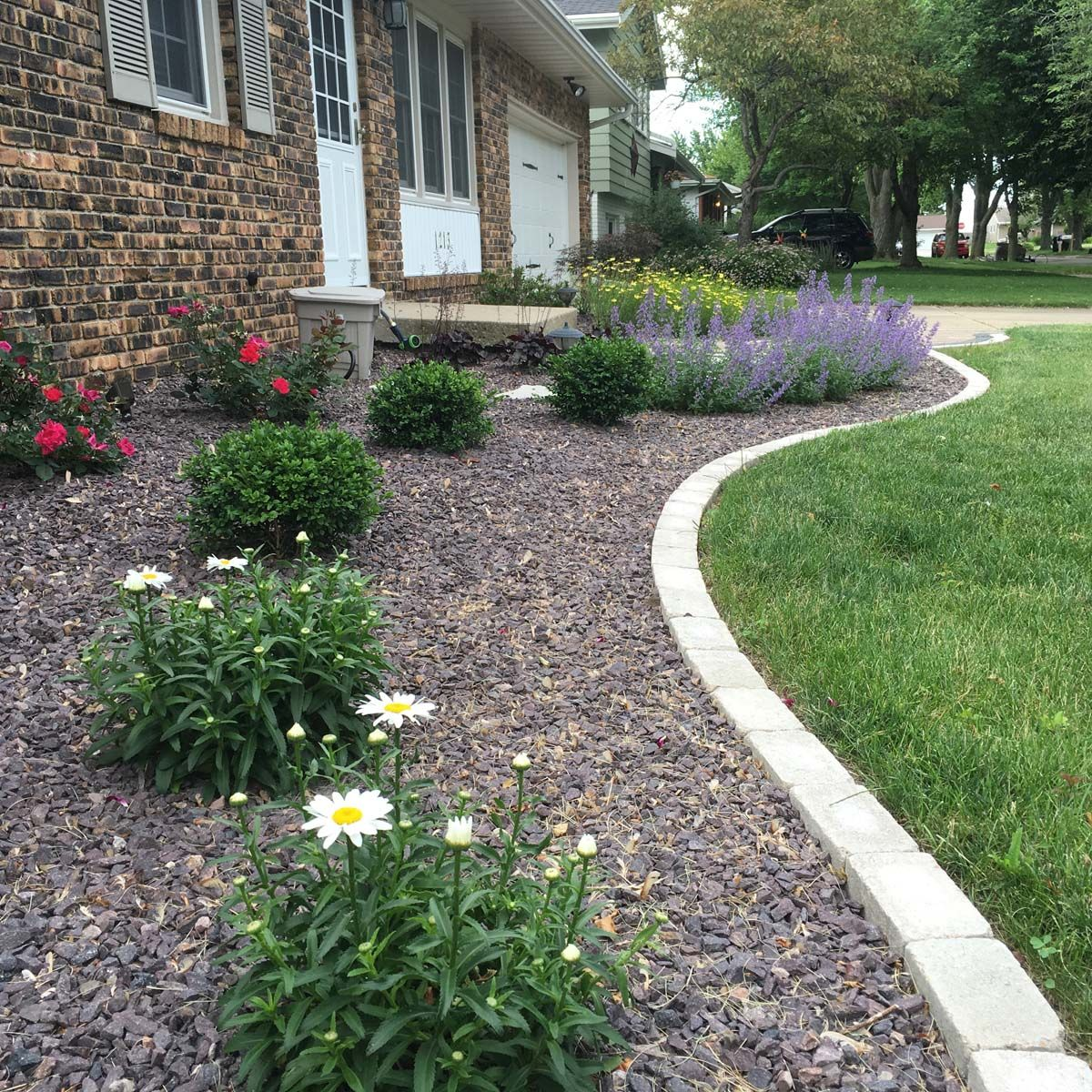 Foundation Plantings3 With Images Landscape Design Services Landscape Design Professional Landscaping