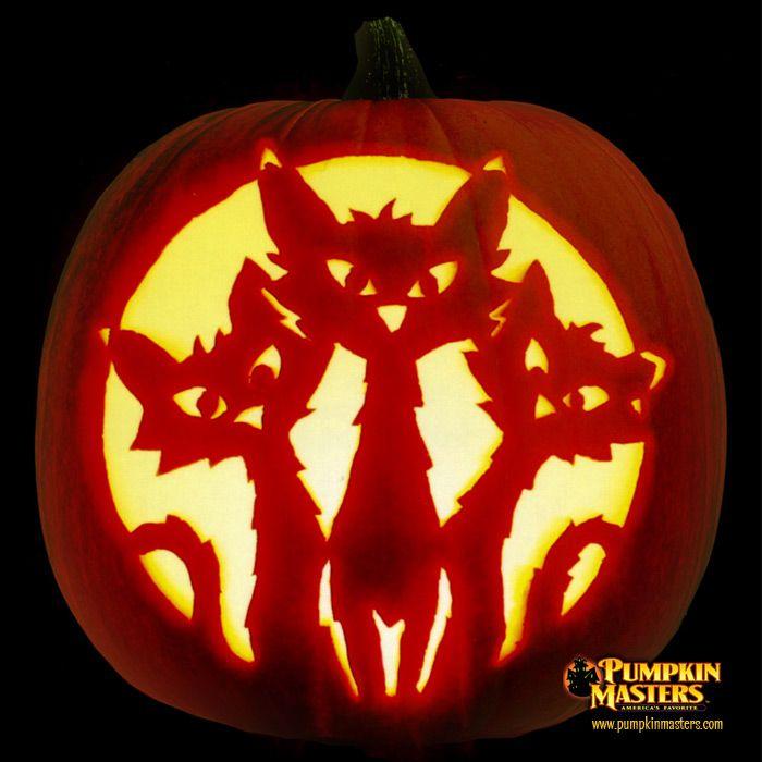 curious kitties pumpkin halloween halloween k rbis schnitzen halloween k rbis und. Black Bedroom Furniture Sets. Home Design Ideas