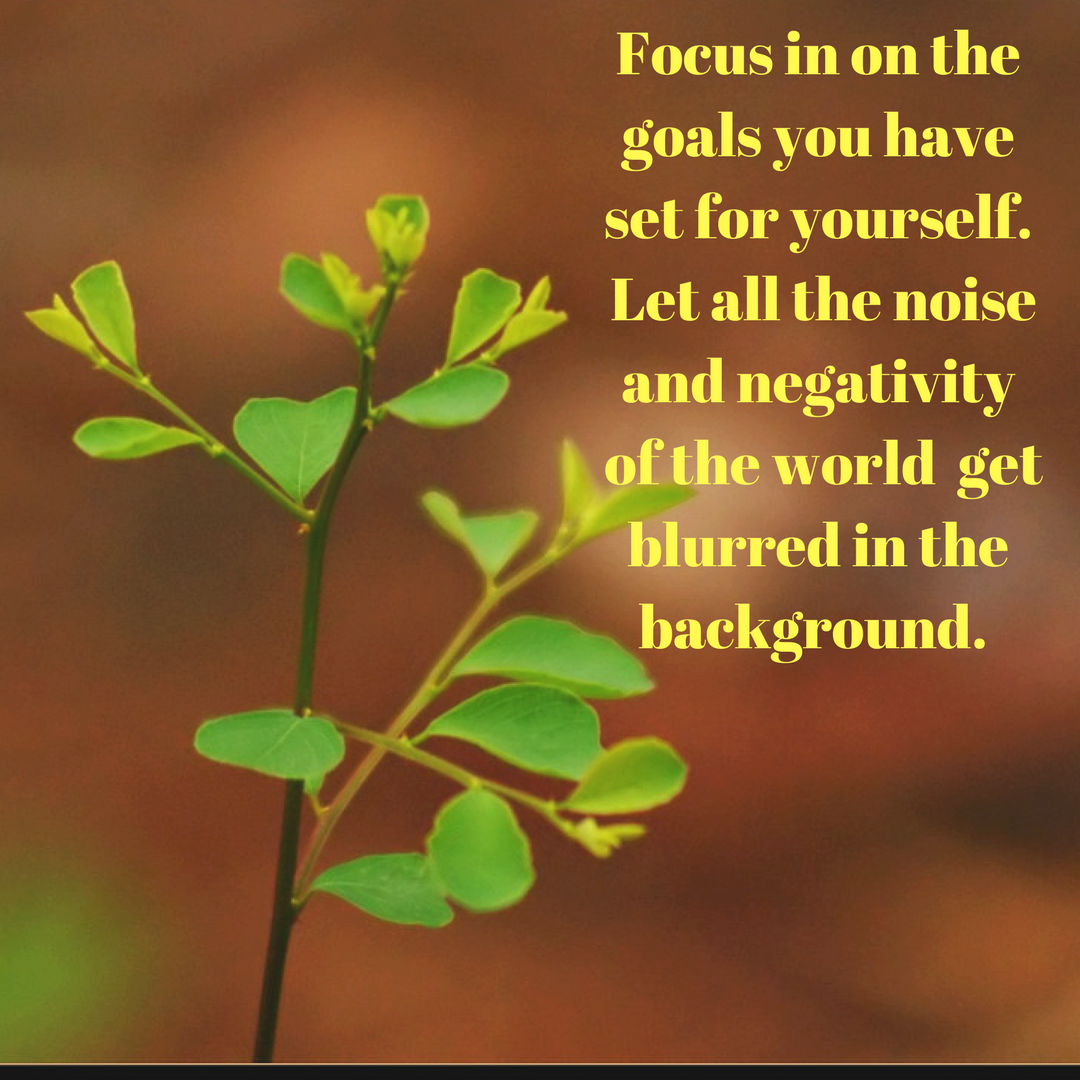 Focus on your goals | My Friend Caroline