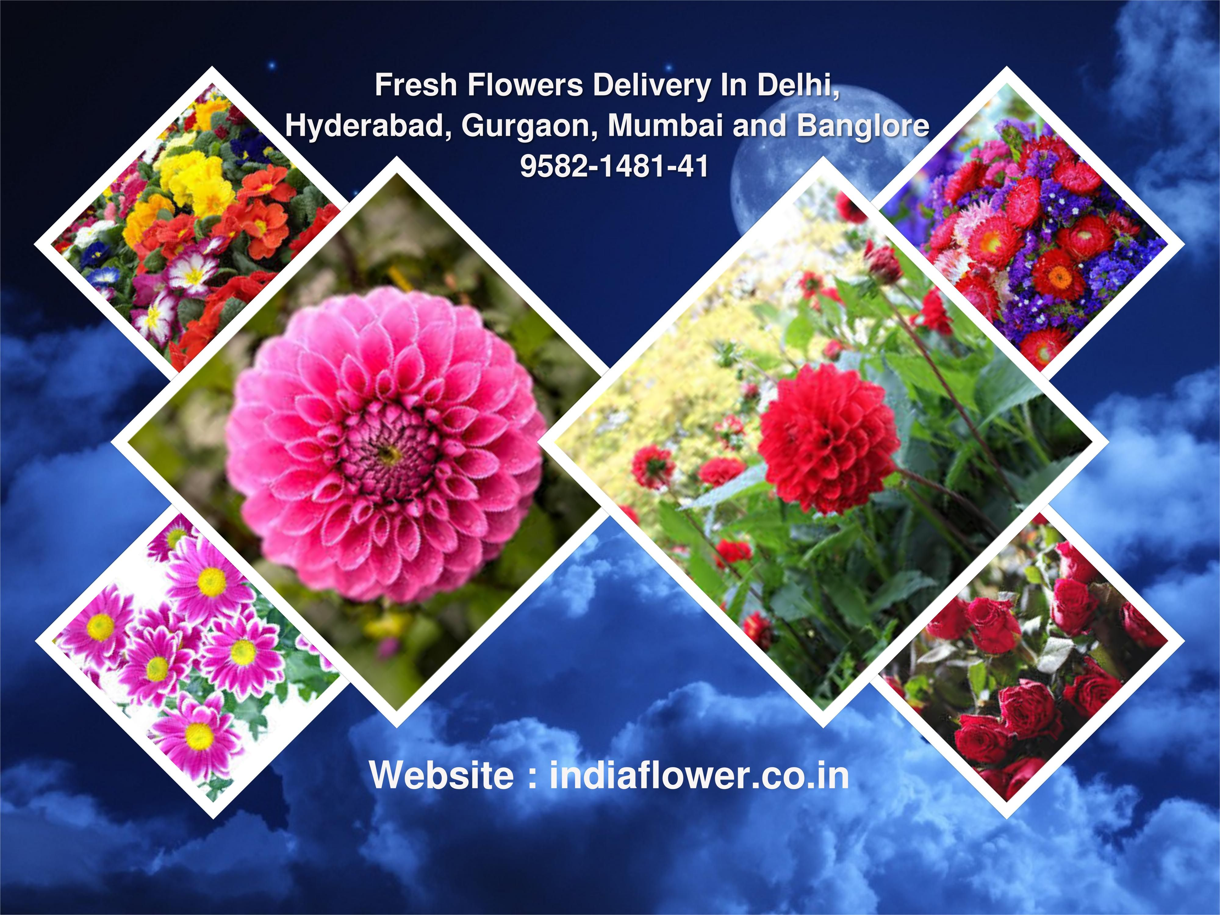 Indiaflower Is The Best Florist In Ghaziabad Offering Same The