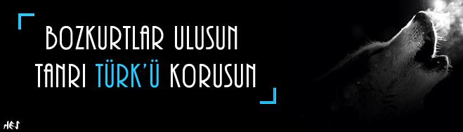 #Türklük