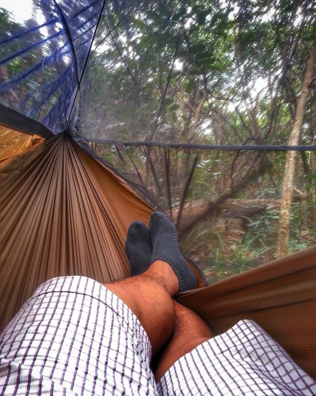 woods chillin u0027 with warbon  blackbird dl hammock  woods chillin u0027 with warbon  blackbird 1 1 dl hammock      rh   pinterest