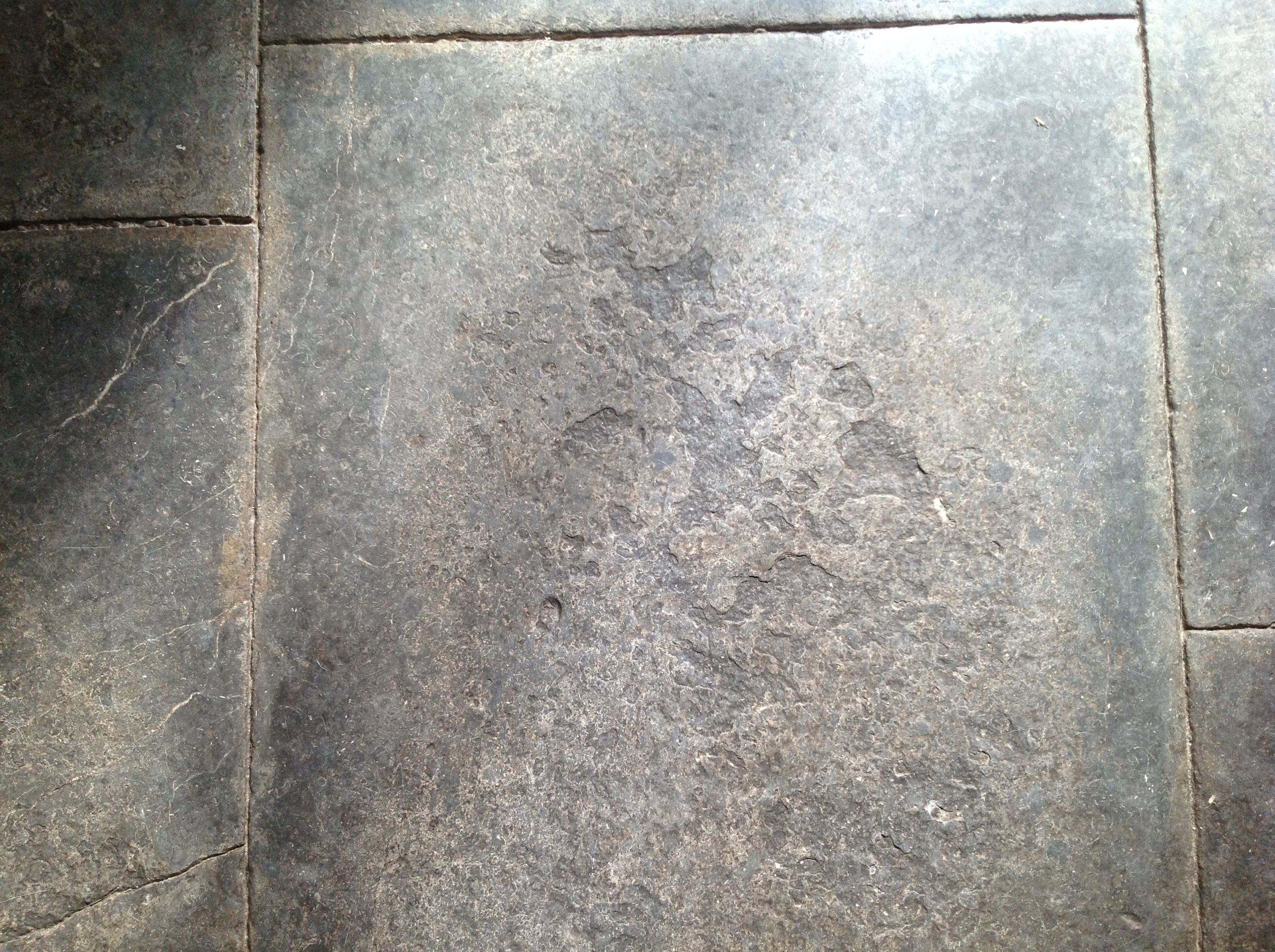 Grey blue lias flagstone floor floors pinterest flagstone grey blue lias flagstone floor dailygadgetfo Images