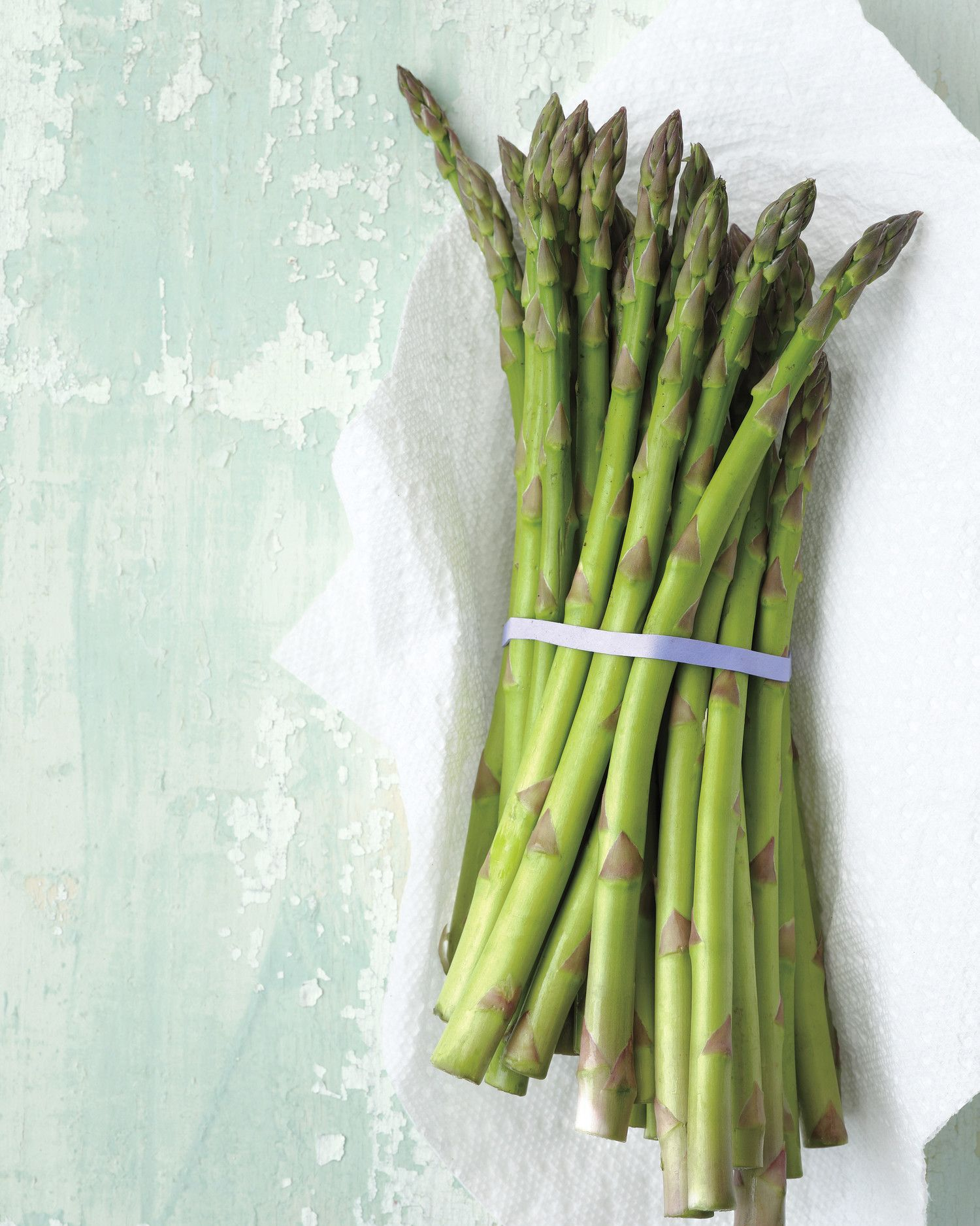 Winter Vegetables: 7 Plants That Don't Get Bothered by the ... Planting Asparagus In The Fall