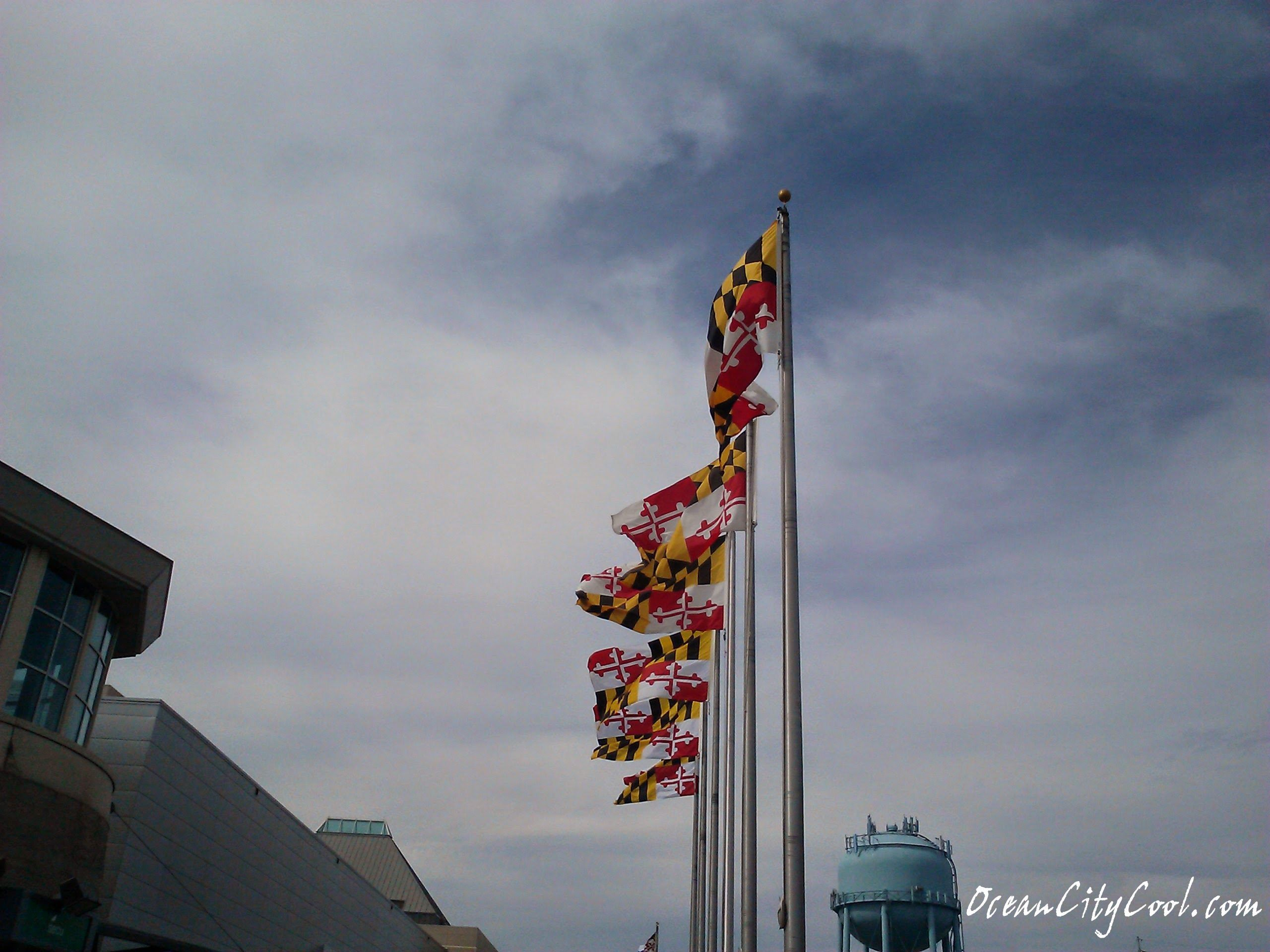 Maryland flags flying high at the Ocean City Convention
