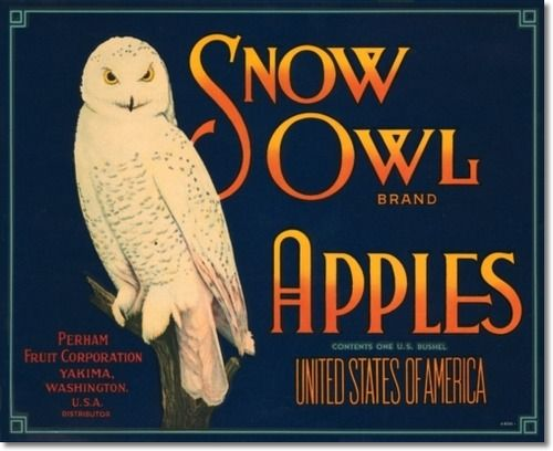 Reclame bord met sneeuwuil. Advertising sign with Snow owl.