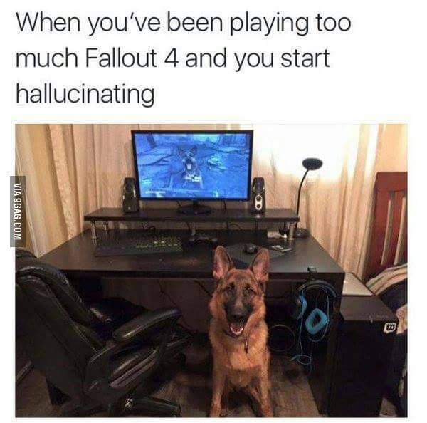 Fallout 4 problems. I know the feeling!