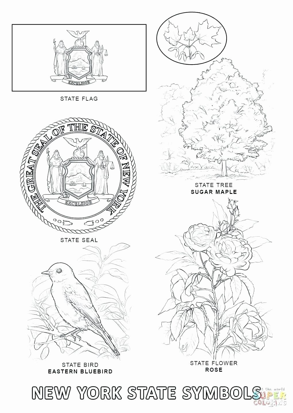 Alaska State Bird Coloring Page Luxury New York State Coloring