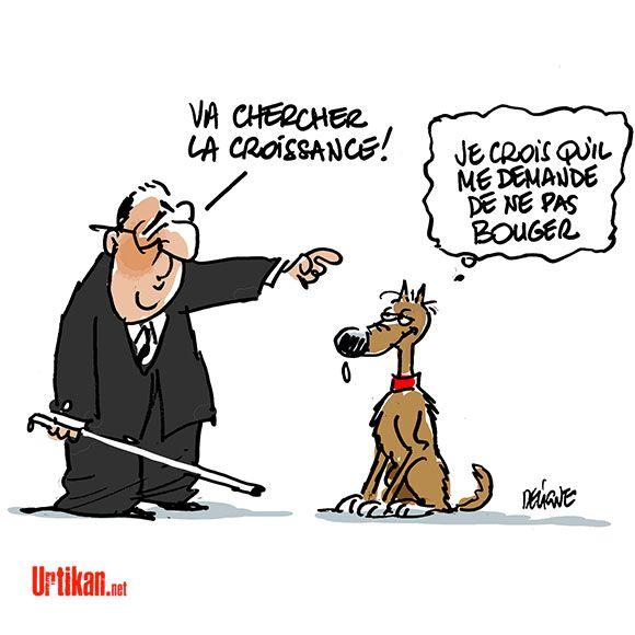 Dessin Humoristique Chien un chien pour françois hollande | dessin du jour | humor, caricature