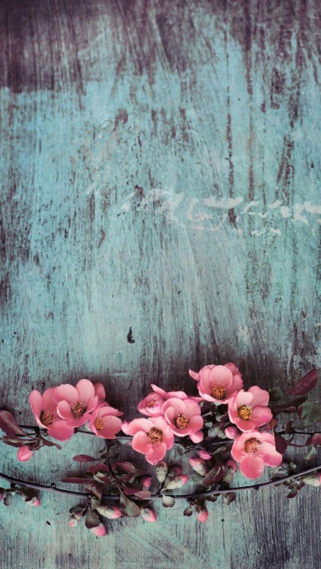 Wallpaper iPhone ⚪ Nature iphone wallpaper, Flower phone