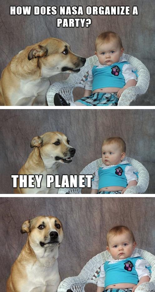 Funny Names For Dogs In Hindi : funny, names, hindi, Funny, Organize, Party?..., Puns,, Jokes,, Animal, Memes