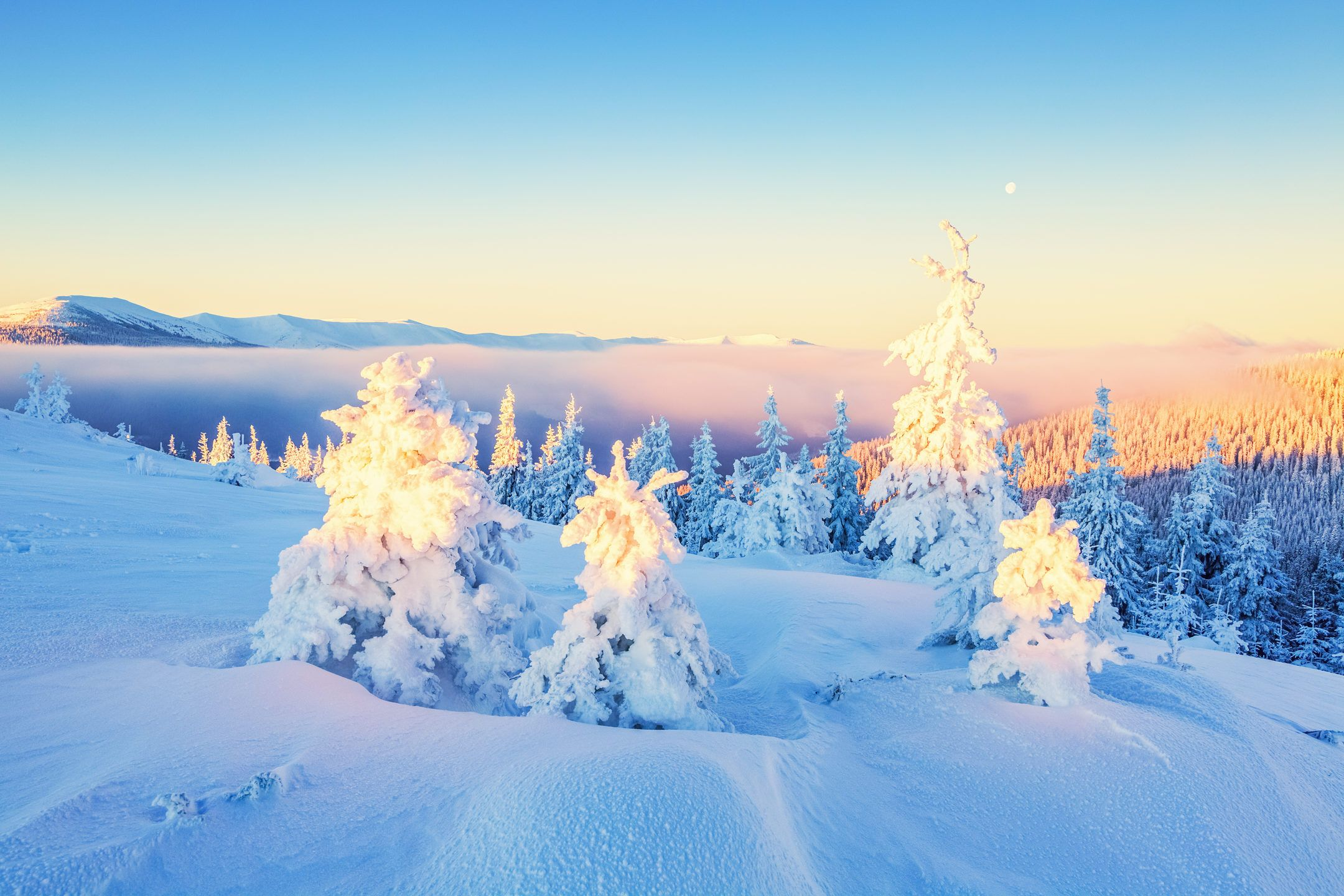 Snow Covering Mountain And Field Winter Theme Hd Wallpaper