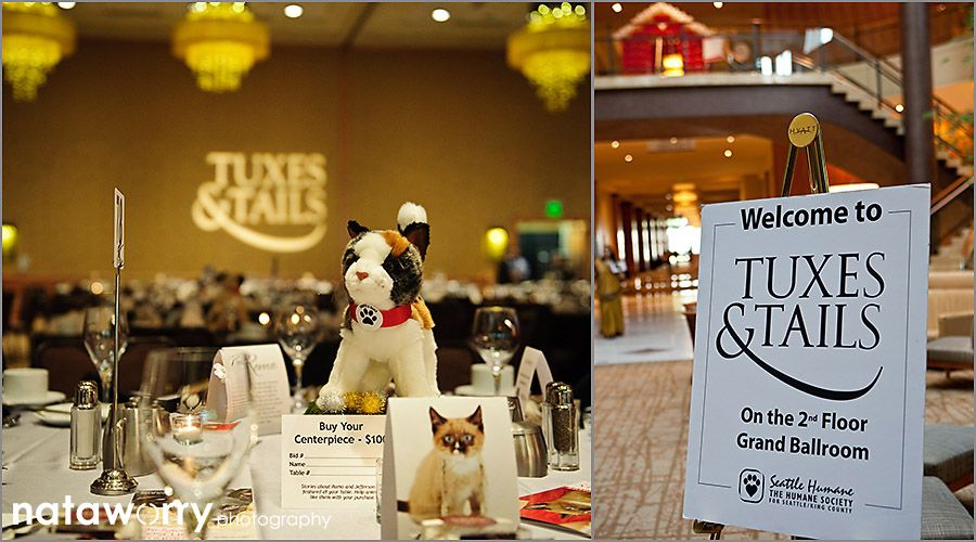 Seattle Humane Society Tuxes And Tails Record Breaking Benefit At The Bellevue Hyatt A La Shindig Events Fundraising Events Shindig Bellevue