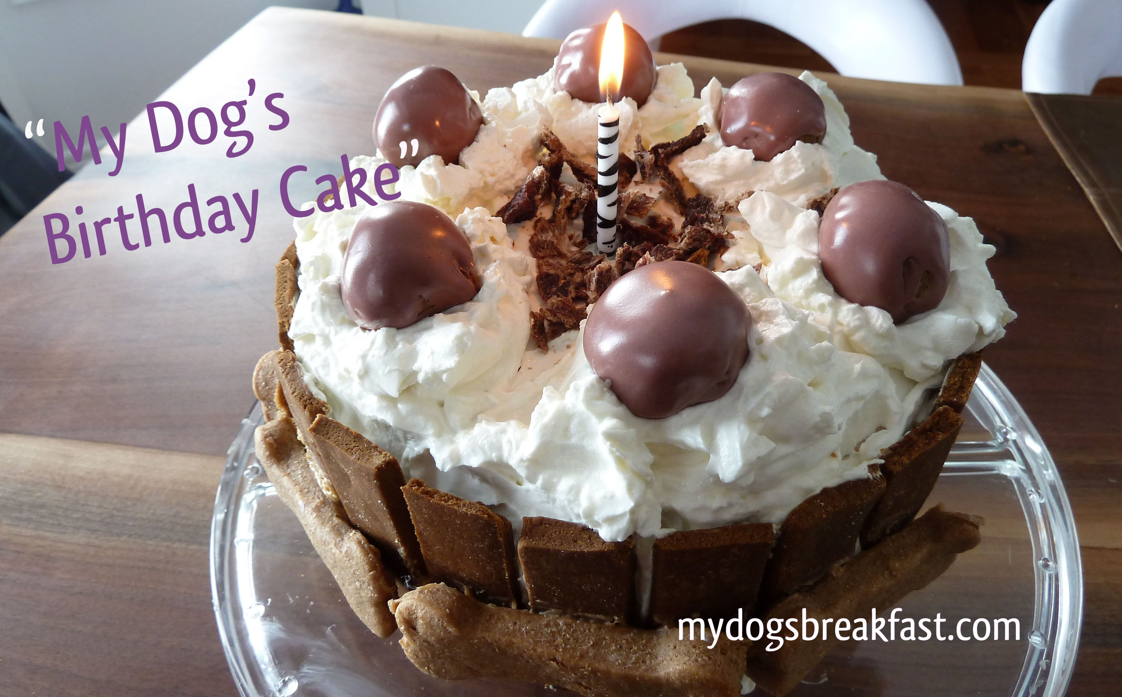 Easy Homemade Dog Birthday Cake Recipe Puppy Approved