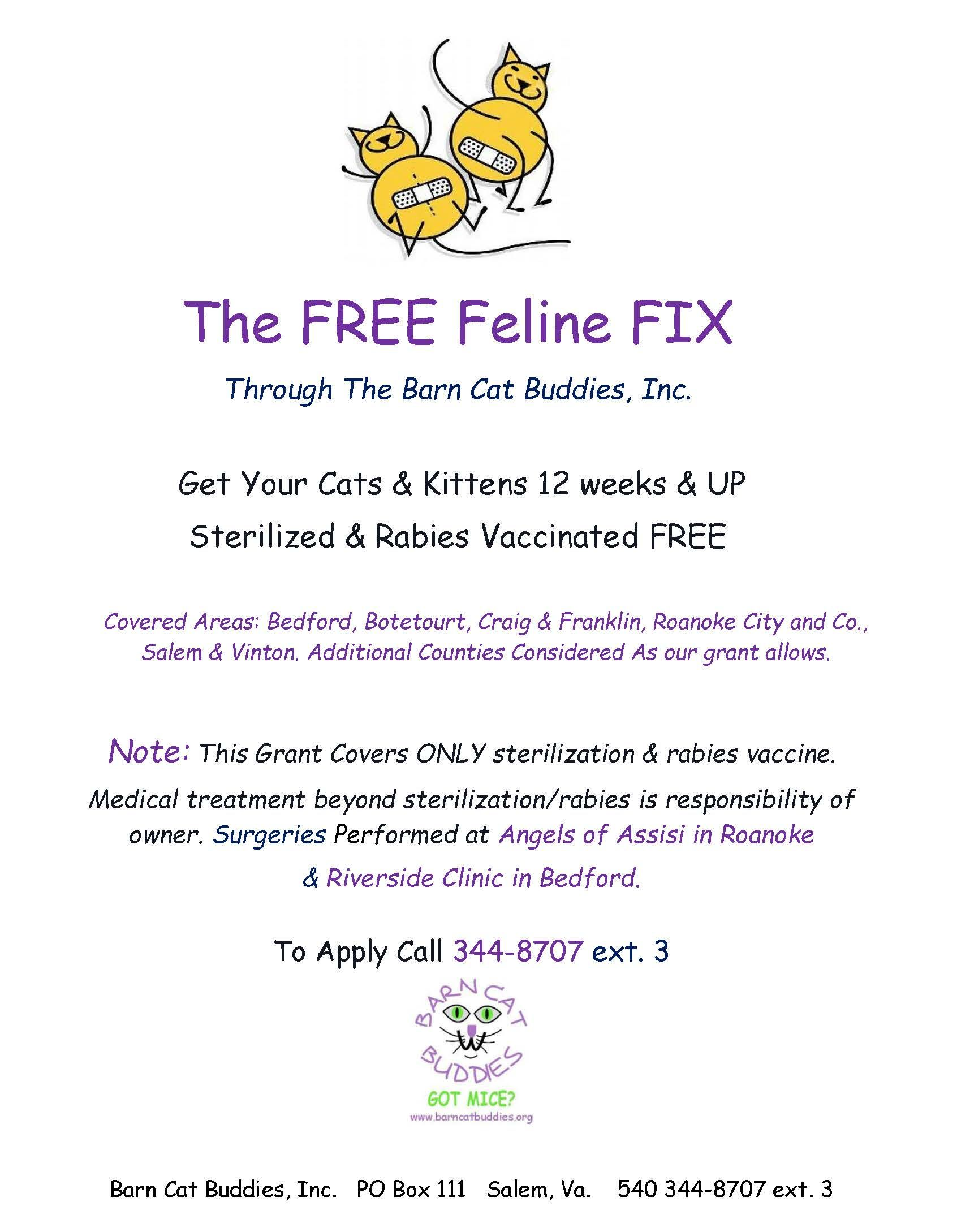 Fff Flyer Vinton Buddy Cats And Kittens