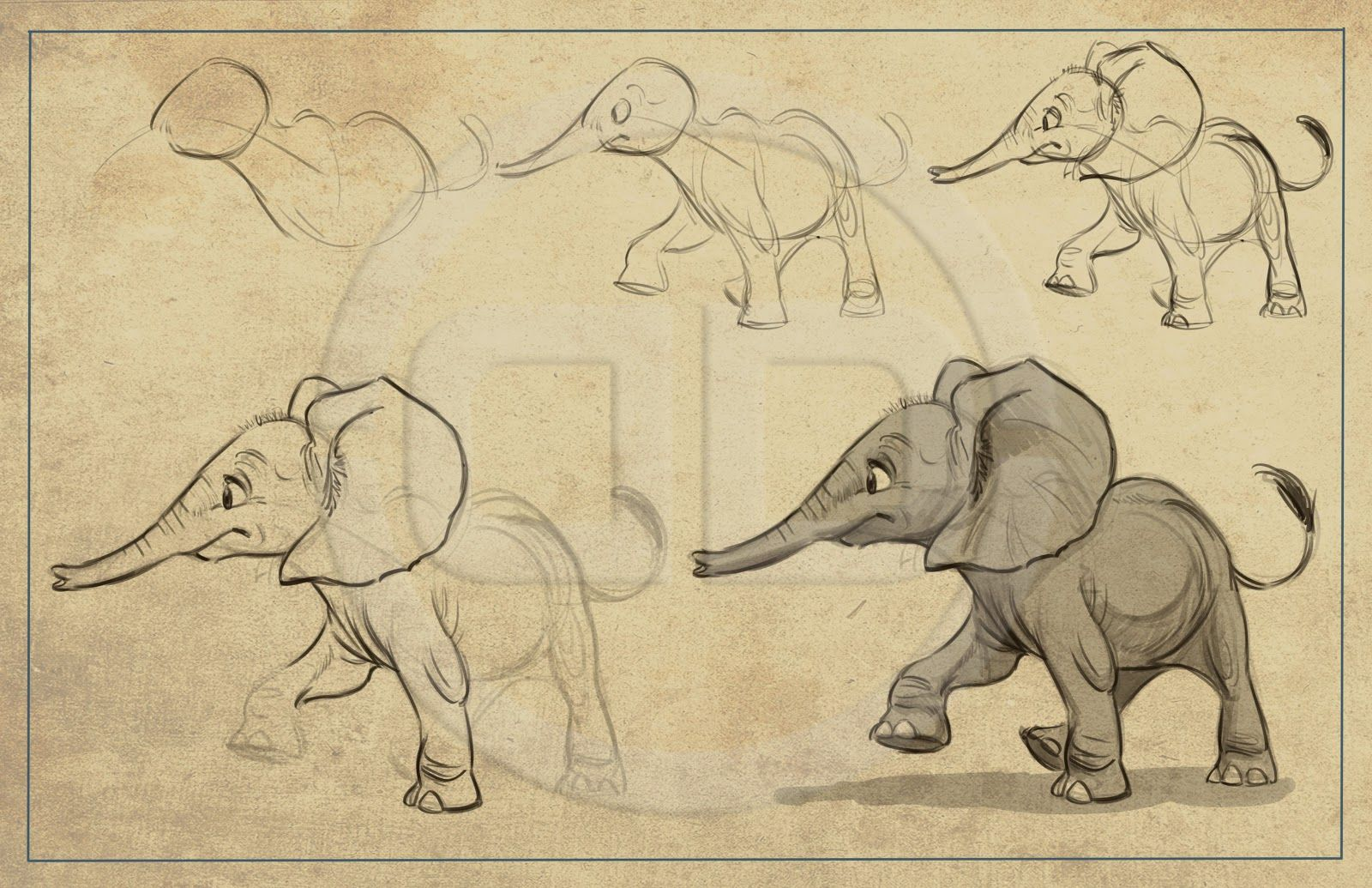 Line Drawings Of African Animals : Elephant drawings tembo how to draw elephants packet the art of