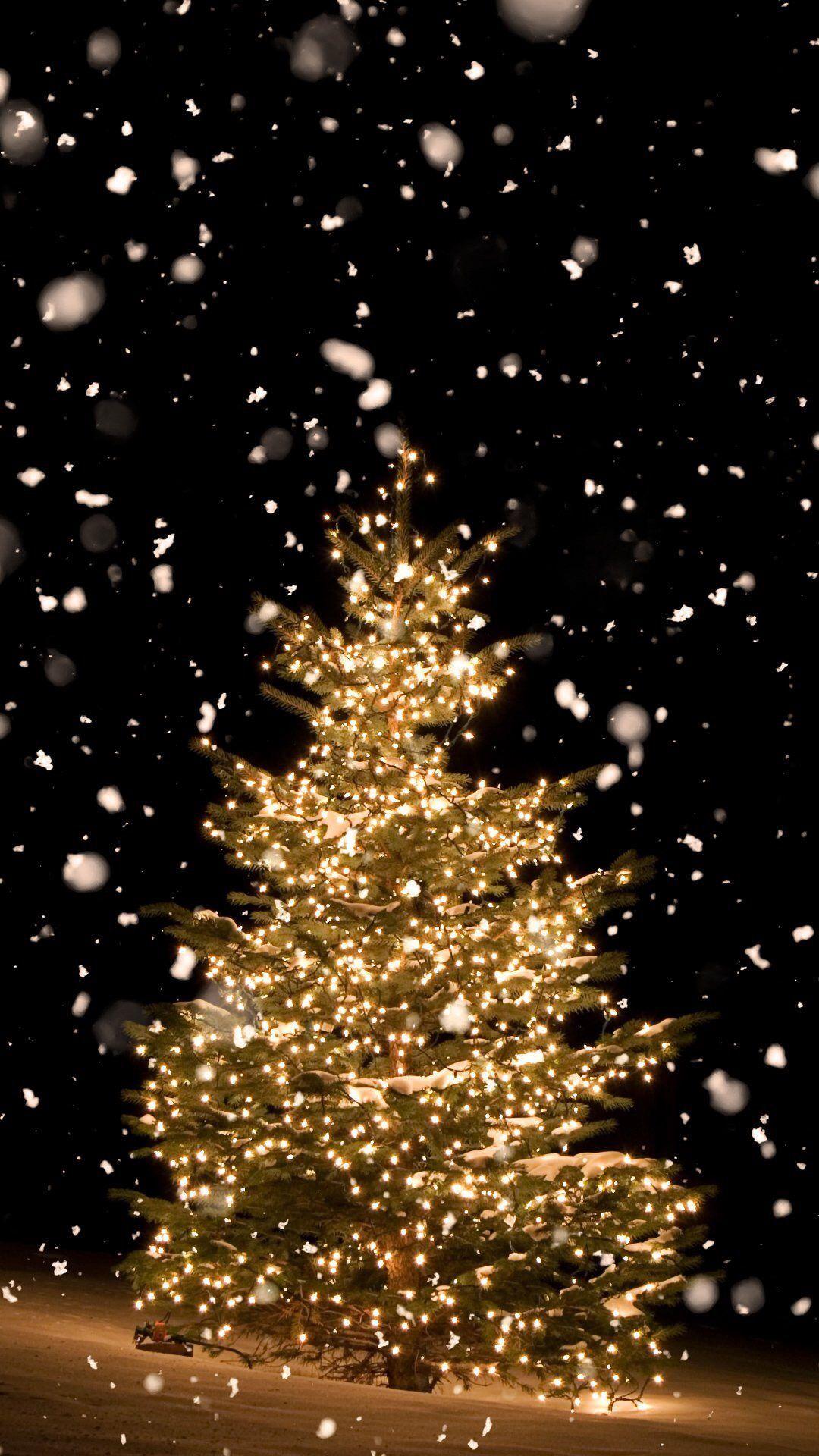 Beautiful Snow Wallpaper Iphone, Christmas Tree Wallpaper Iphone, Christmas  Phone Backgrounds, Holiday Iphone
