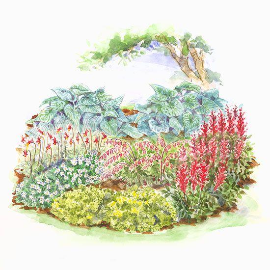 ColdClimate Shade Garden Plan – Small Garden Planning