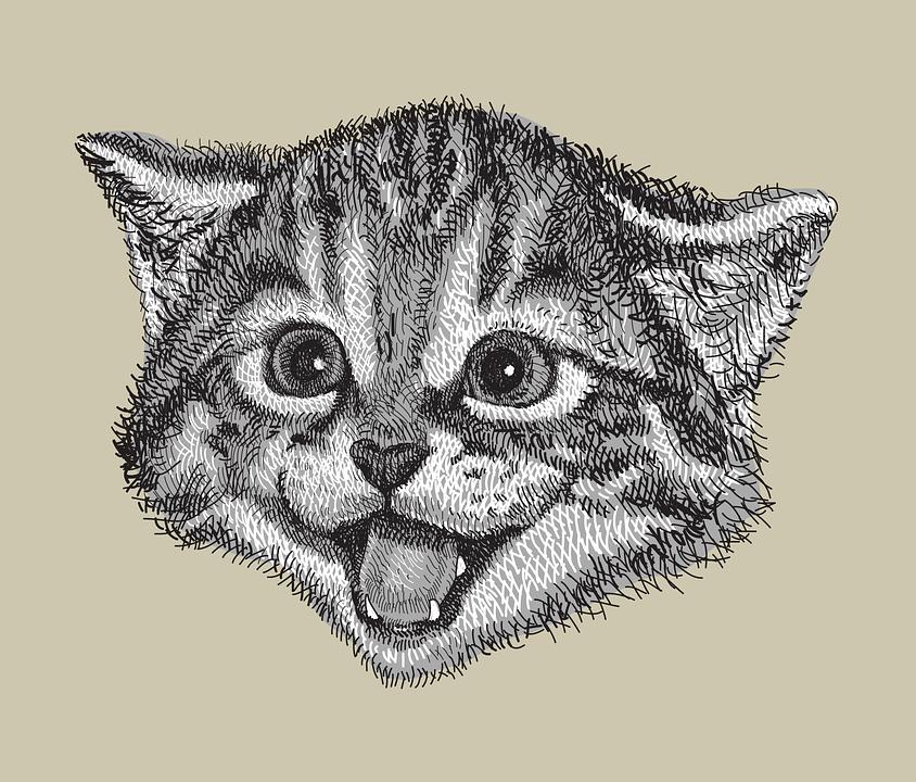 gratis afbeelding op pixabay tekening