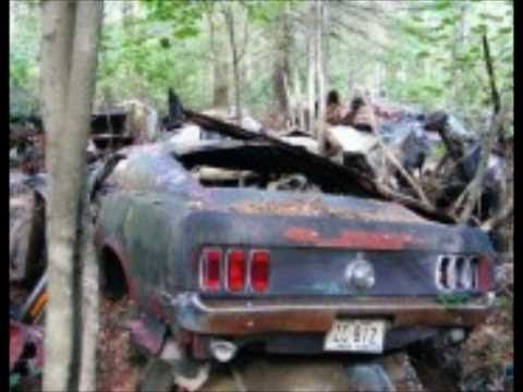 Abandoned Cars Part 1: The Ford Mustang | Mustang | Pinterest on ford mustang2015, ford tonka, ford cobra, ford model t, ford thunderbird, ford crown victoria police interceptor, ford raptor, ford powerstroke, ford pickup, ford f-series, ford super duty, ford concept, ford falcon, ford 15 passenger van, ford taurus, ford racing, ford e-series, ford gt, ford cars,