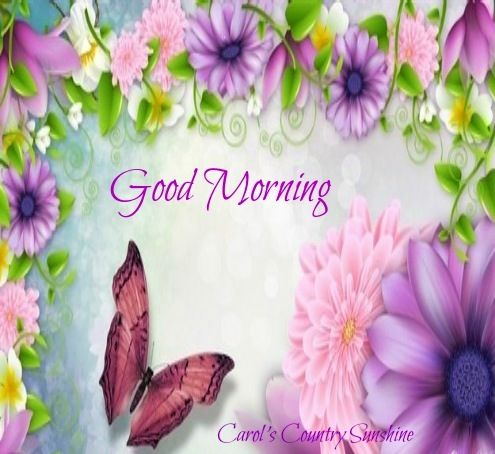 Good Morning Via Carol S Country Sunshine On Facebook Good Morning Good Night Good Morning Good Morning Quotes
