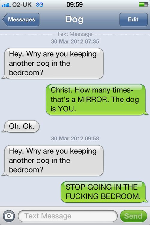 Text From Dog..