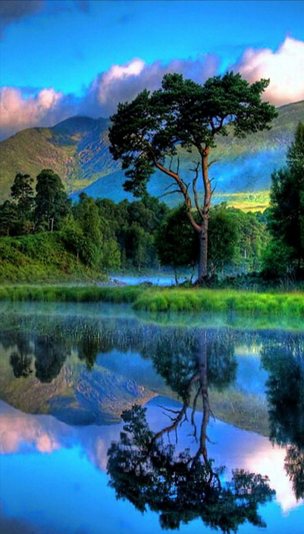 What A Beautiful Scene Looks Like New Zealand But Of Course Could Be Anywhere In The World Beautiful Nature Nature Scenes Nature Pictures