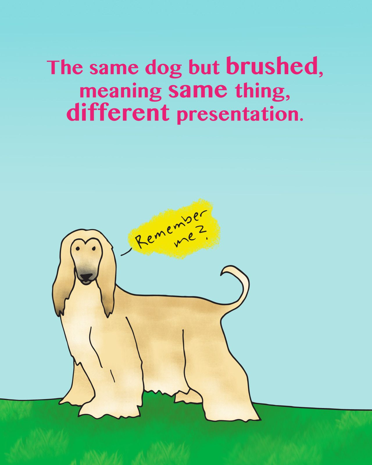 El mismo perro pero peinado. Translation: The same dog but brushed ...