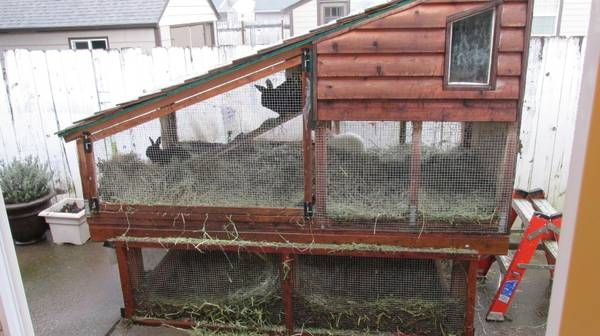 Homemade rabbit hutch. Great idea
