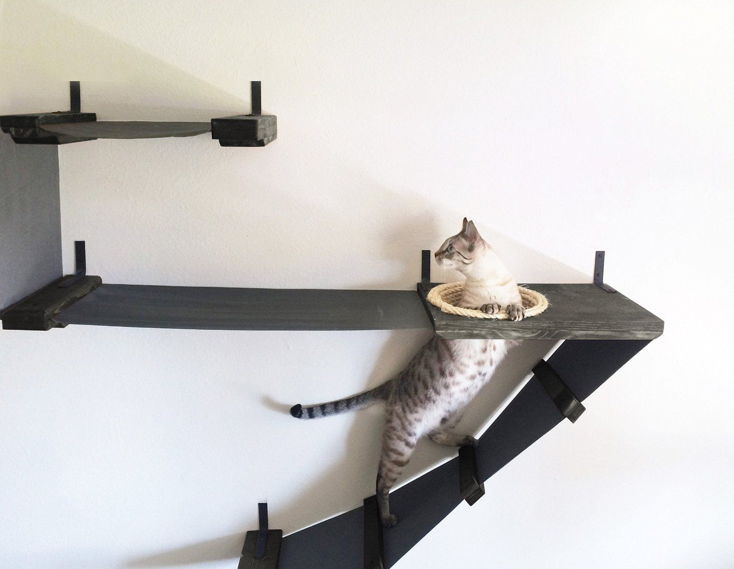 7 Creative Cat Wall Shelves To Transform Your Home Into A Chic Cat Playground Cat Wall Shelves Cat Perch Cat Hammock