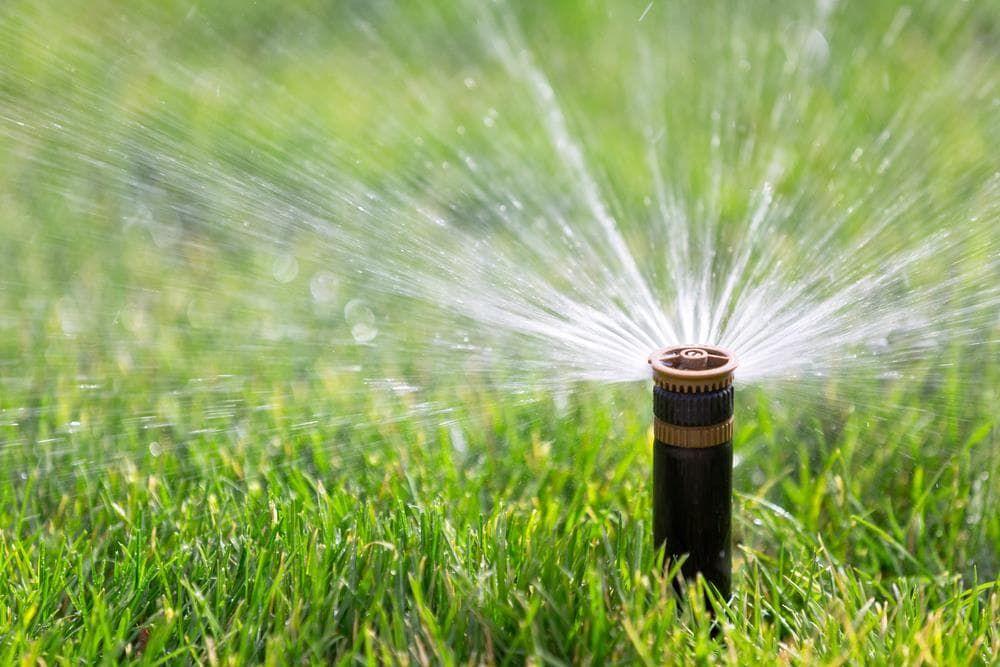 Best Lawn Sprinkler Reviews 2020 Buyer S Guide Lush Lawn Lawn Care Best Lawn Sprinkler