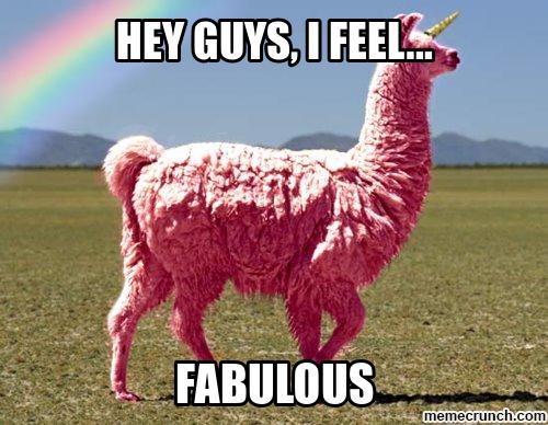 Fabulous Llama Gif