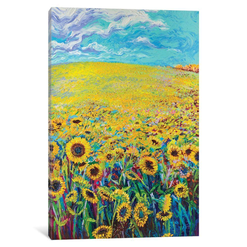Sunflower triptych panel iu by iris scott original painting on