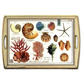 Wooden Trays To Decorate Delectable Shells Decoupage Wooden Tray At Tuvalu Home Furnishings In Laguna Inspiration Design