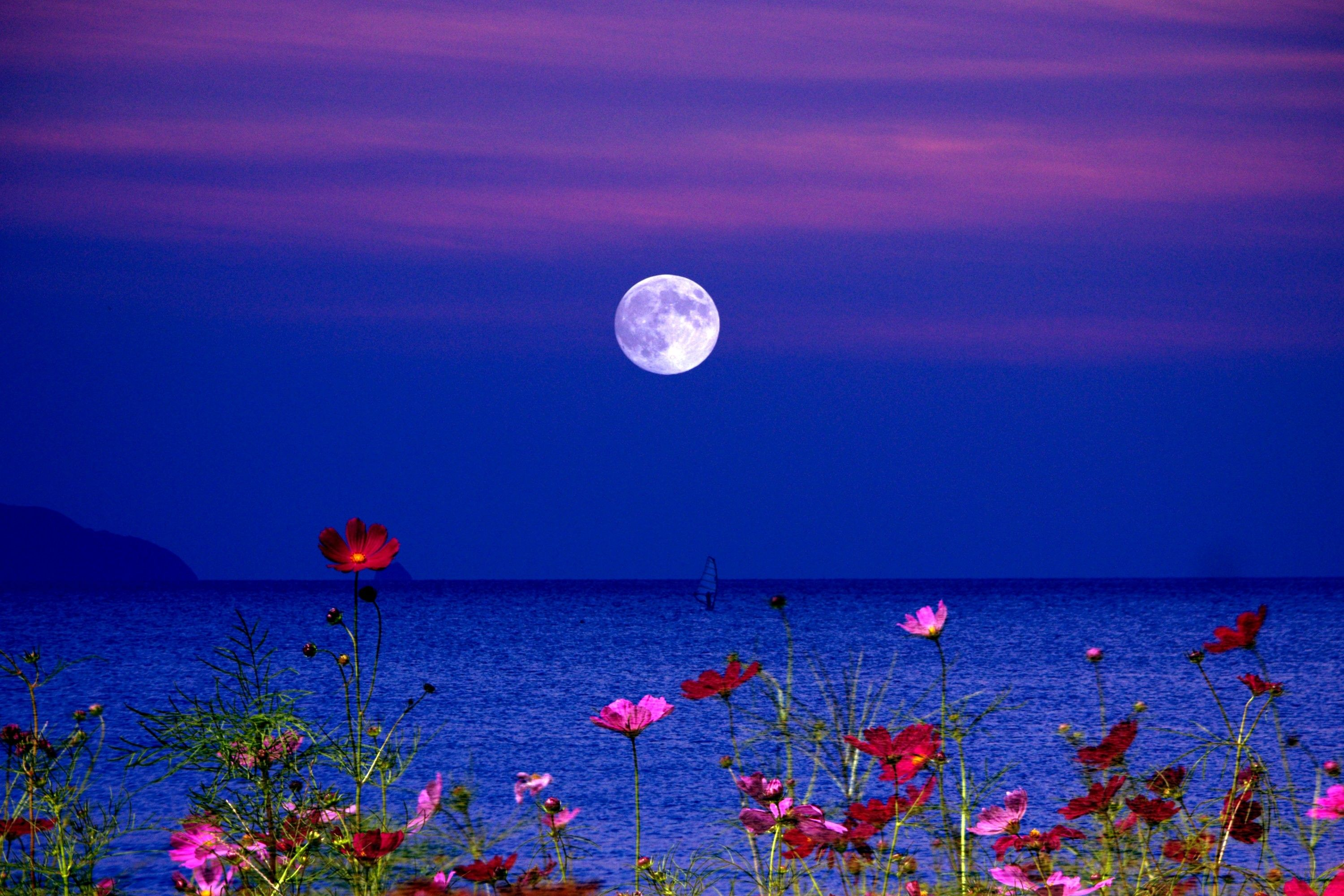 Lake Night Fullmoon Flowers Full Moon Wallpapers Of Beautiful Lakes Clair De Lune Signe Sagittaire