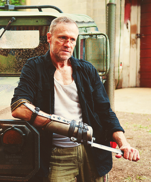 Image result for Merle Dixon hand