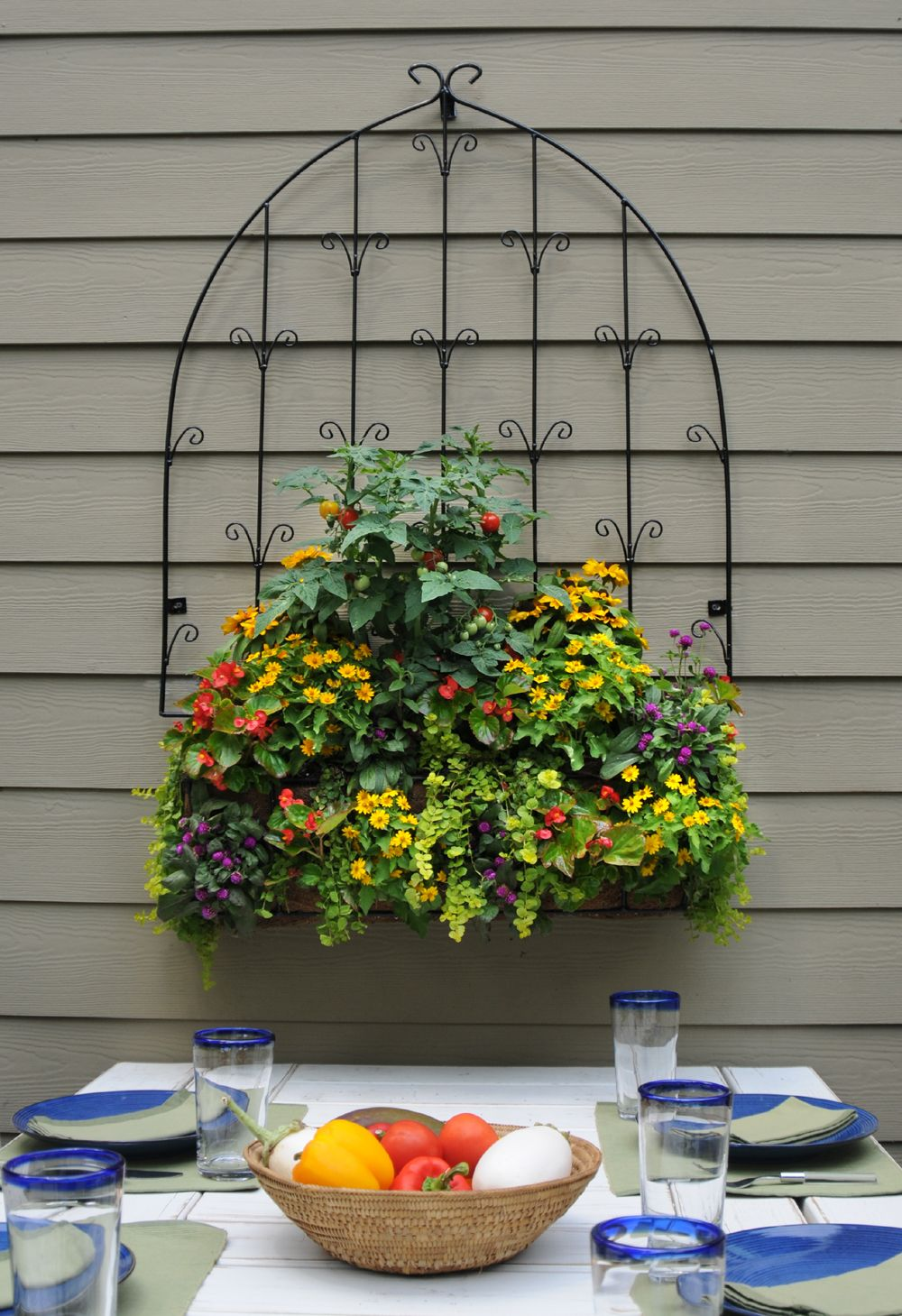 Tomatoes,melampodium, Red Begonias, Purple Gomphrena Are Planted In This  Trellis Window Box Combination (www.kinsmangarden.com).
