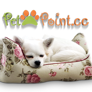 At Petpoint Cc We Have A Shop All Fantastic Fashion And Accessories For Your Lovely Pet We Have A Hand Selected Range Of Products F With Images Love Pet Animal Lover Pets