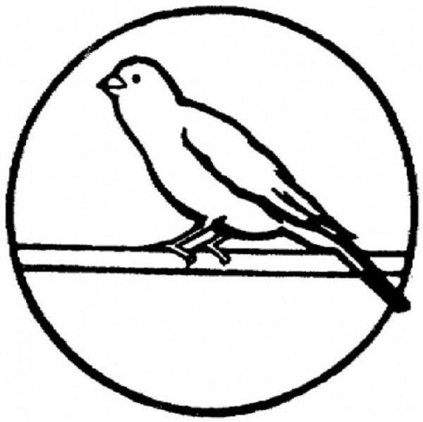 Coloring Pages Canary Bird