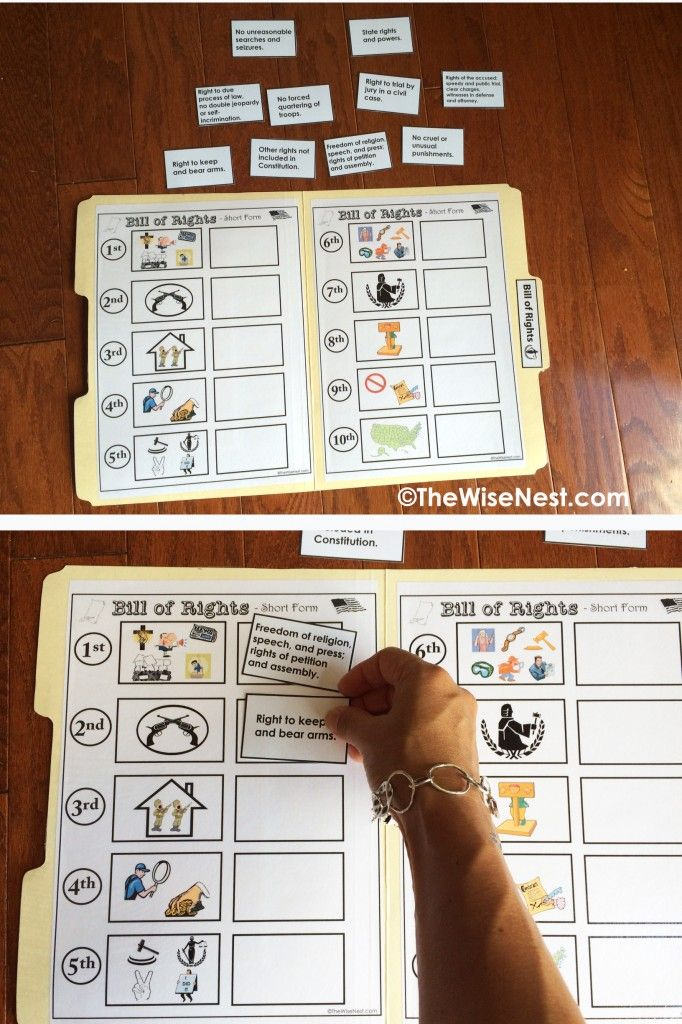 Bill Of Rights Printable And File Folder Game The Wise Nest