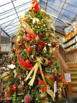 secrets of a professional christmas tree decorator weston ma patch