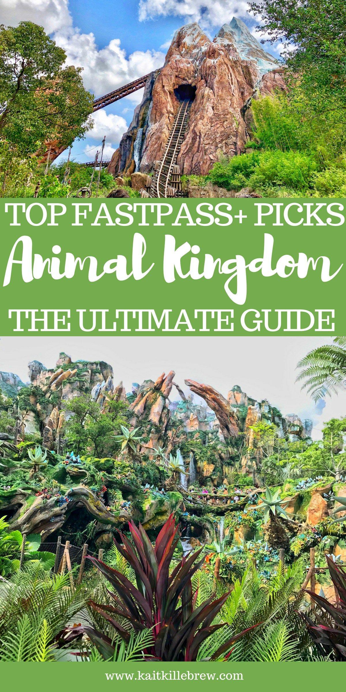 My Fastpass+ Picks: Animal Kingdom | Kait Around The Kingdom