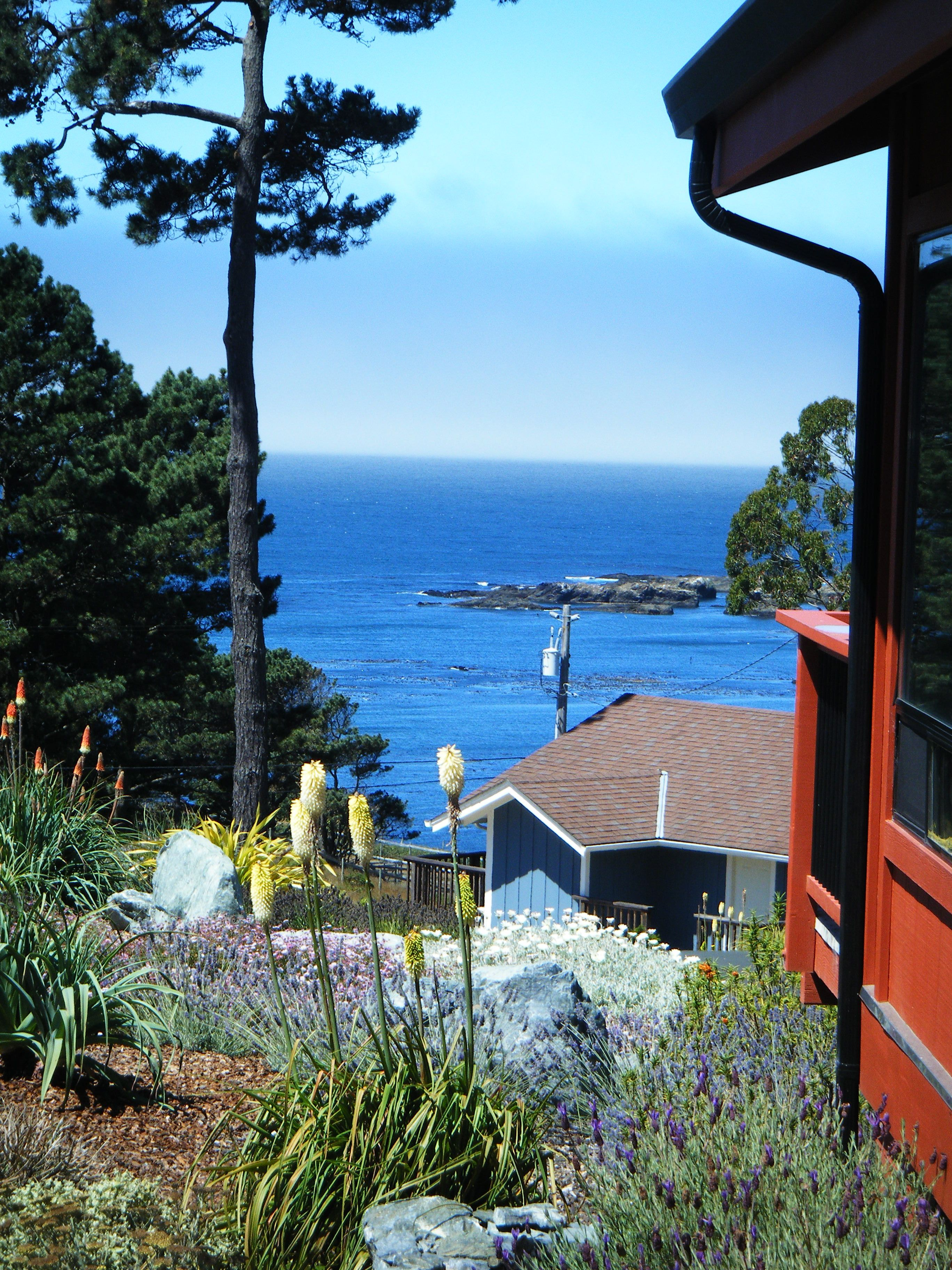 Mendocino, CA - am so happy to live here, every single day is a blessing.