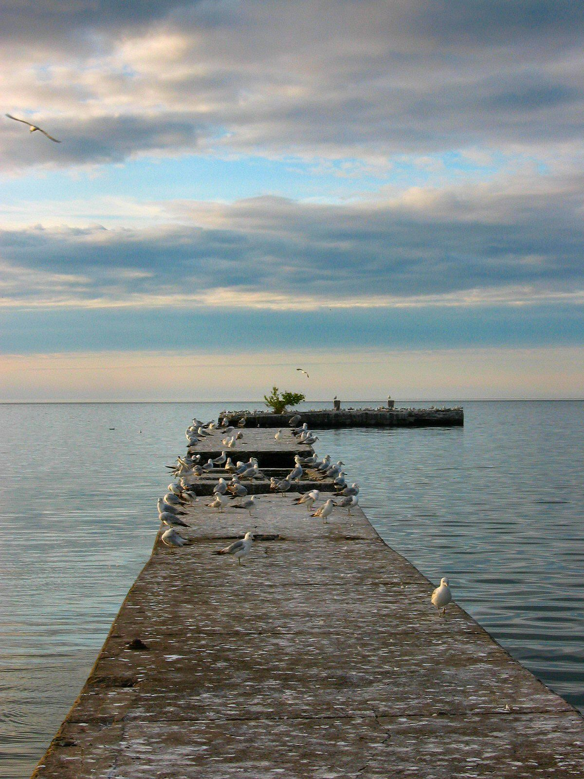 Old Pier At Olcott Beach Ny Photo By Kristine Gazzo