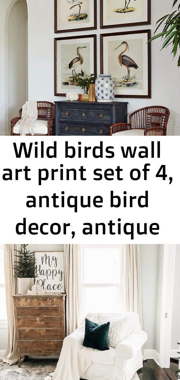 Wild birds wall art print set of 4, antique bird decor, antique bird illustration, ornithology pos 1 Simple Winter Living Room | How to Decorate After Christmas Wild One Birthday Party: Where the Wild Things Are Cake, Decor and More!!  Wild Things is one of the hottest trends in birthday parties.  Check out these amazing wild things ideas and wild one birthday party inspiration to share today. Minimalist small pool des