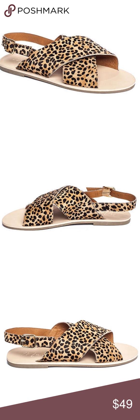 Leopard sandals, Matisse shoes, Sandals