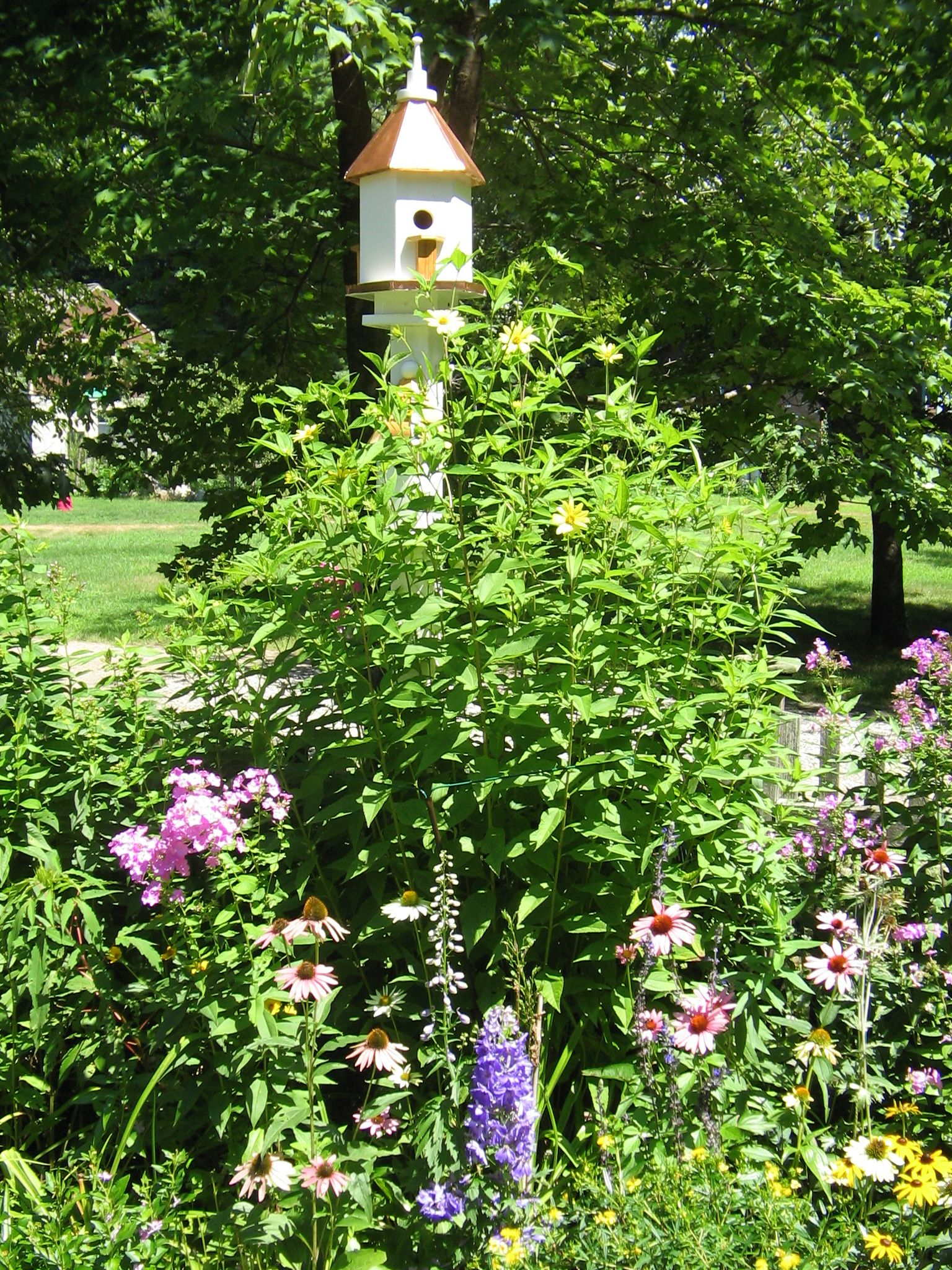 By Gina Marino, Certified Wildlife Garden, Purple Coneflower, Coreopsis, Roses,