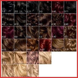 Garnier Olia Hair Color Chart 165075 Amazon Garnier Olia Hair Color 3 0 Darkest Brown Ammonia Olia Hair Color Hair Color Chart Light Hair Color